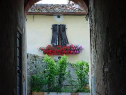 Private Guided Tours in Florence & Tuscany